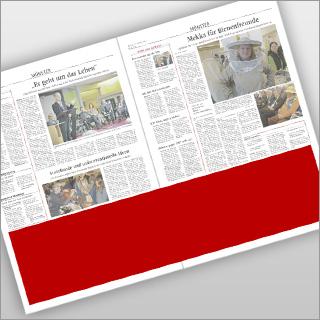 Beitragsbild_Panorama-Anzeige